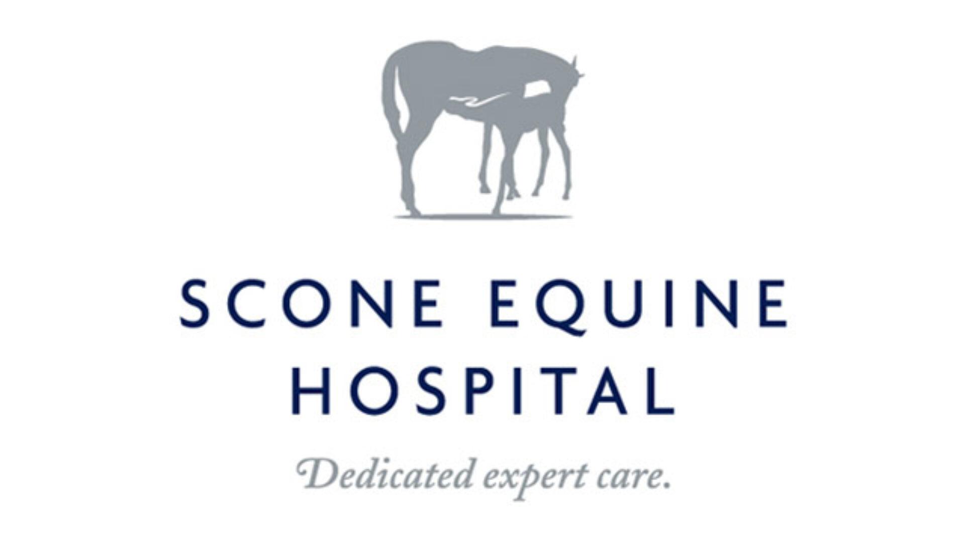 Scone equine hospital 01