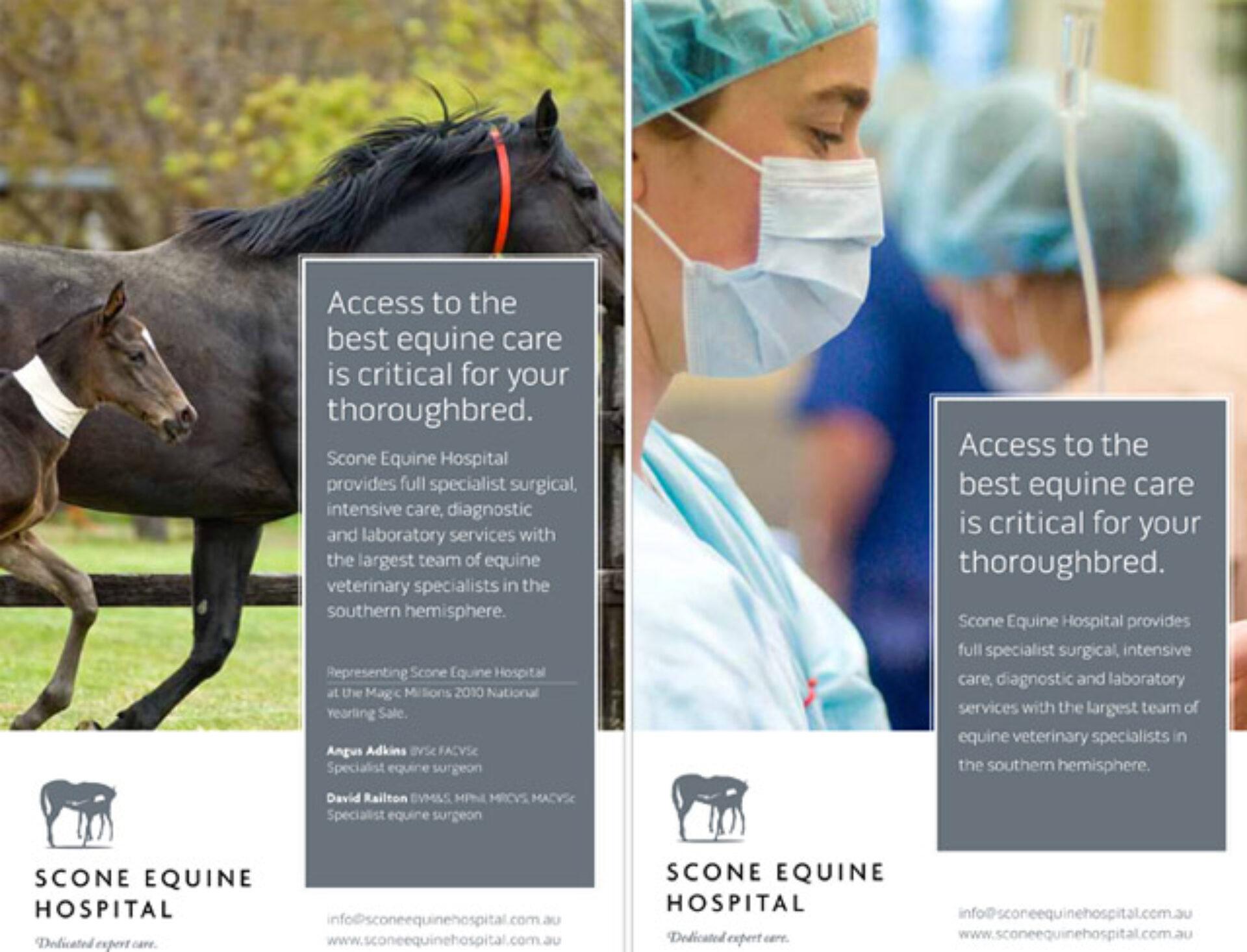 Scone equine hospital 03