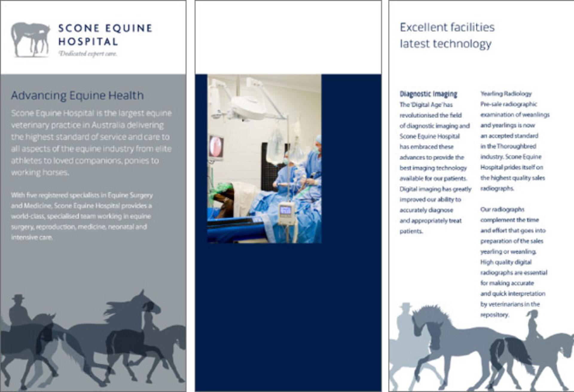 Scone equine hospital 06
