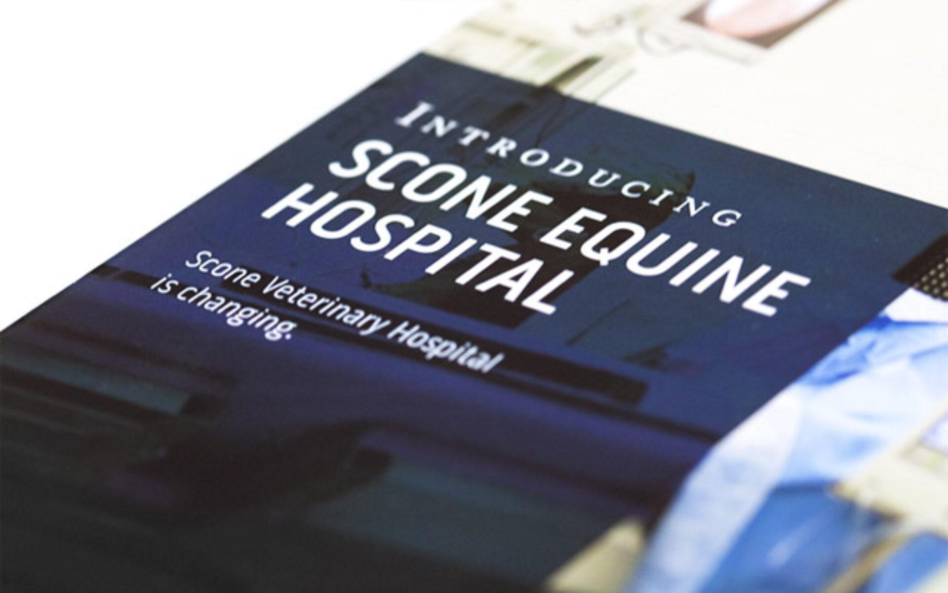 Scone equine hospital 08